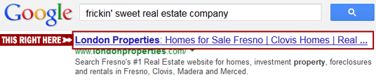 'Meta Title' is the name of your page in search results. Try to incorporate your most important keywords, but keep it short.